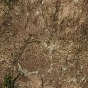 ground-texture (78)