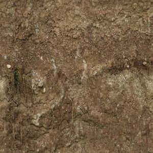 ground-texture (79)