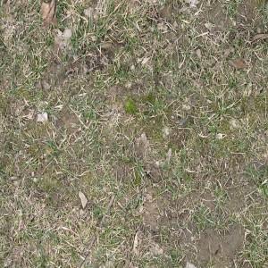 ground-texture (8)