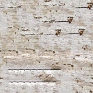 paint-texture (68)