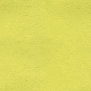 paper-texture (2)