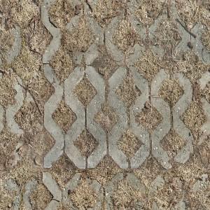 bruschatka-texture (87)