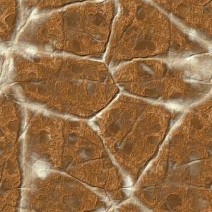 rock-texture (85)