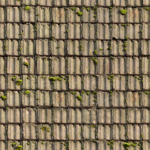 roof-texture (12)