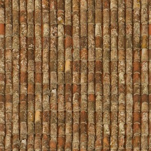 roof-texture (43)