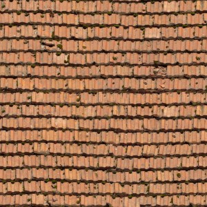 roof-texture (7)