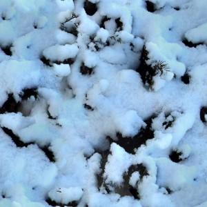 snow-texture (37)