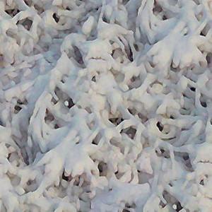 snow-texture (4)