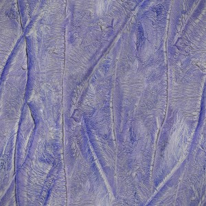 stucco-texture (87)