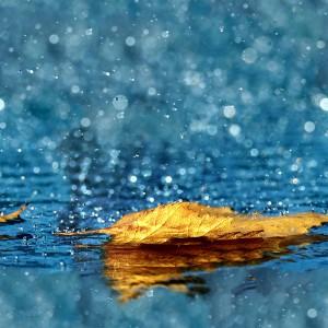 water-texture (9)