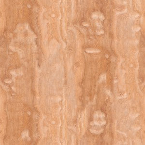 wood-texture (10)