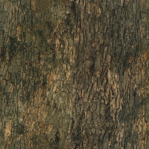 wood-texture (111)