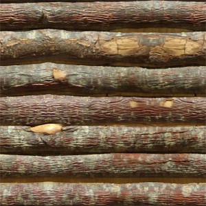 wood-texture (121)