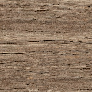 wood-texture (134)