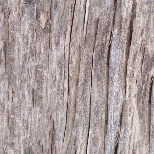 wood-texture (139)