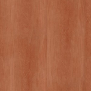 wood-texture (19)