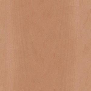 wood-texture (23)