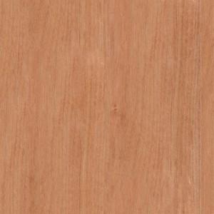 wood-texture (29)