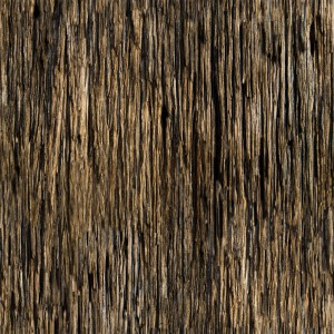 wood-texture (30)