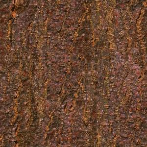 wood-texture (7)